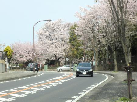 横山公園前・県道503号線