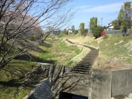 四ッ谷さくら橋から鳩川上流を望む