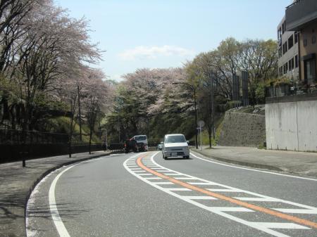 横山公園前県道503号線