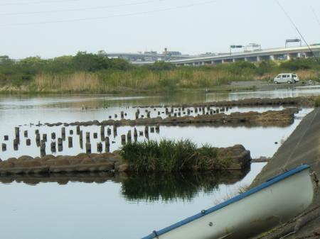 相模川左岸・東名高速北側
