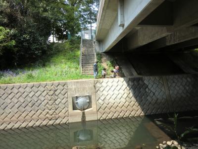 四ッ谷さくら橋