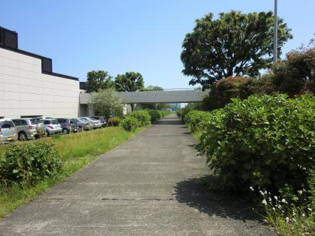 畑かん西幹線用水路・総合体育館西側