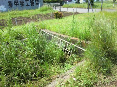 畑かん西幹線用水路・総合体育館南