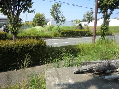 畑かん西幹線用水路・相模原麻溝公園東交差点付近