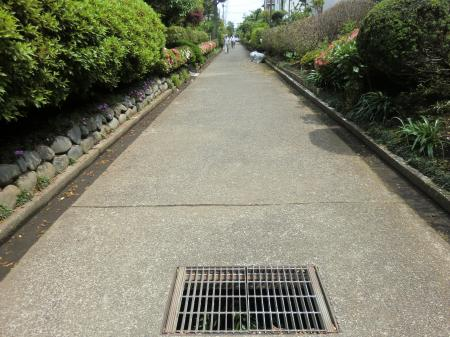 西幹線用水路(さがみの仲よし小道)