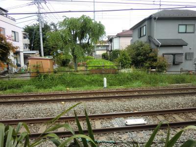 小田急線横断サイフォン吐口桝