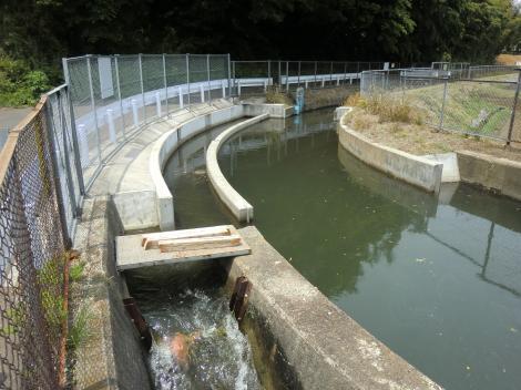 大蔵サイフォン・相模川左岸幹線用水路