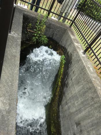 谷ケ原浄水場・緩速着水井