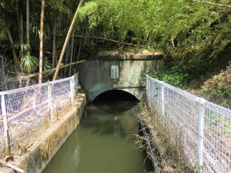小沢隧道出口