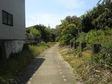 小沢頭首工幹線水路