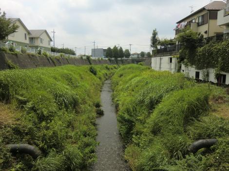 横浜水道みち水道橋より鳩川下流を望む