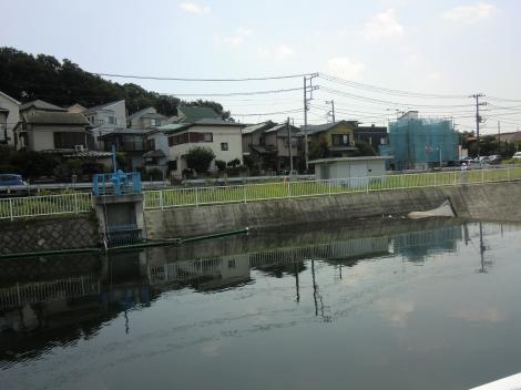 石川堰取水口
