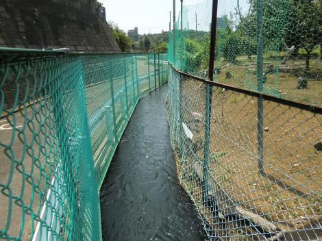 石川堰用水路・東山田公園付近