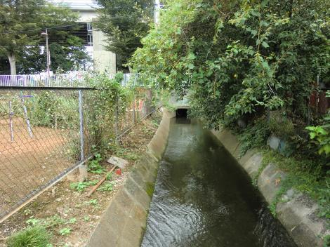 相模川左岸幹線用水路・茅ヶ崎市赤羽