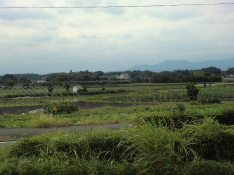 綾瀬市役所南から見た田園風景