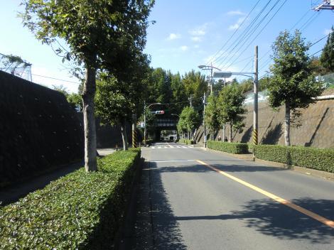 畑かん御所見支線・伏越で市道を横断