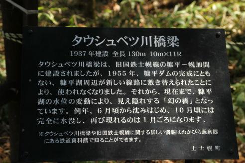2013052609.jpg
