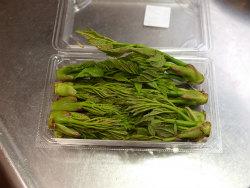 鶏天山菜天ぷら12