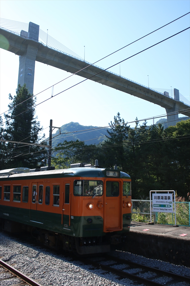 115系と橋 2014 9/23