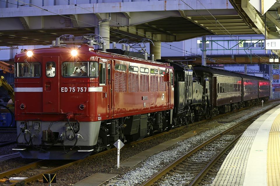 CR1A0035.jpg