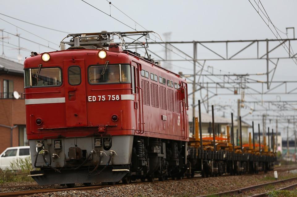 CR1A0330.jpg