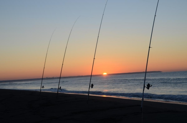 早朝からアキアジ釣り・
