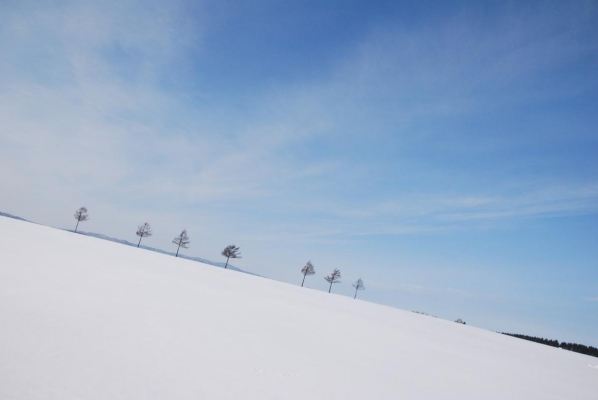 何時ものメルヘンの丘