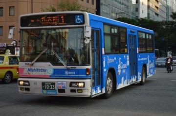 kashi9201.jpg