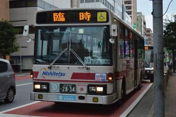 yayo5048.jpg