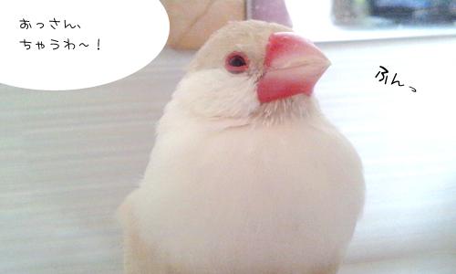 白髪・・・か?_3