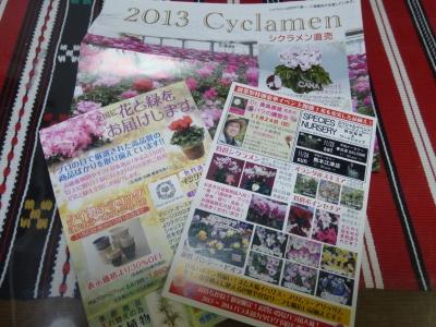 はがき 2013 11・23