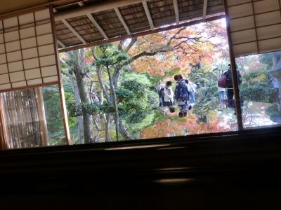 心田庵③ 2013 11・23