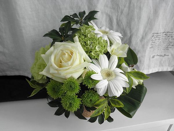 20130430花