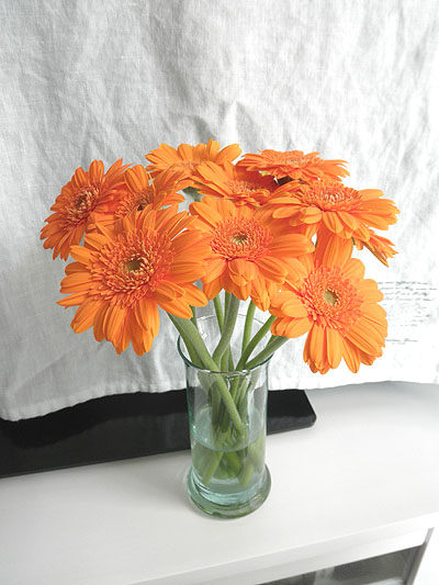 20130523花