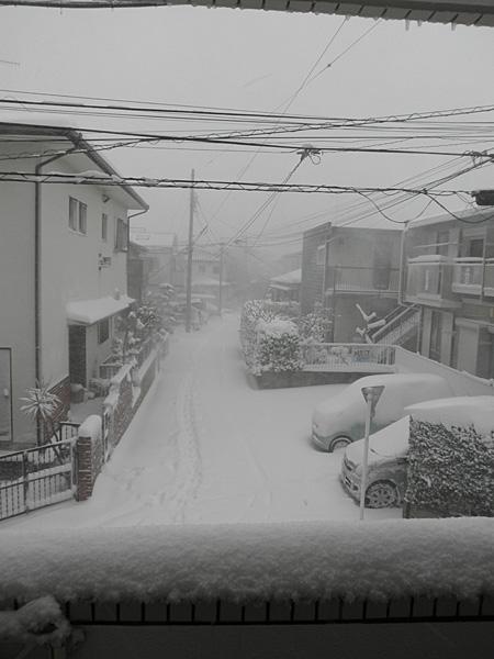20140208雪