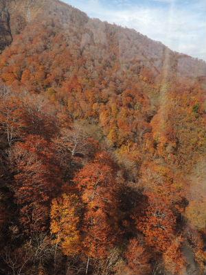 99谷川岳2013-5