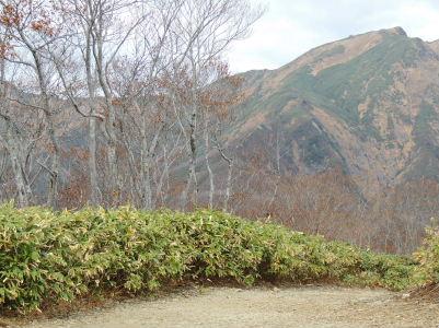 99谷川岳2013-2