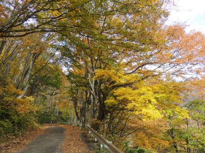 99谷川岳2013-6