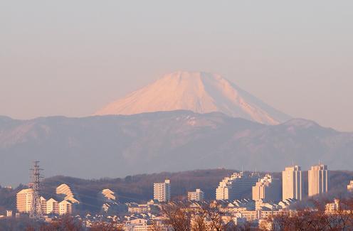 2014年初富士