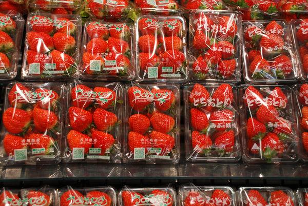 まっ赤な苺18