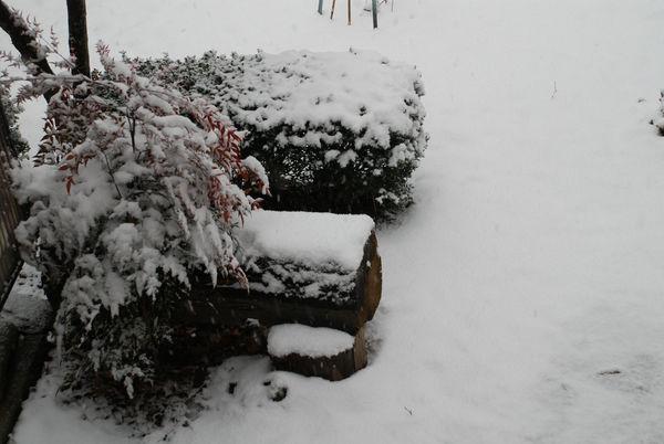 立春の雪1