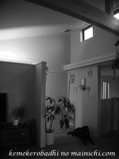 kerol2013-6-8.jpg