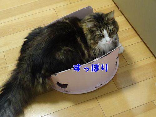 tukaikata4_text.jpg