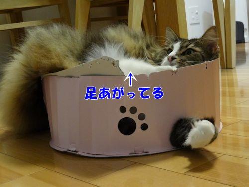 tukaikata6_text.jpg