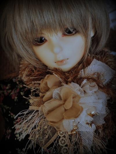 DSC_0043_20140124093250c21.jpg