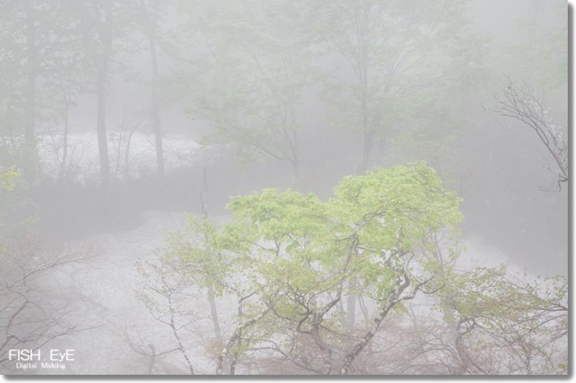 130606-amamizu1.jpg