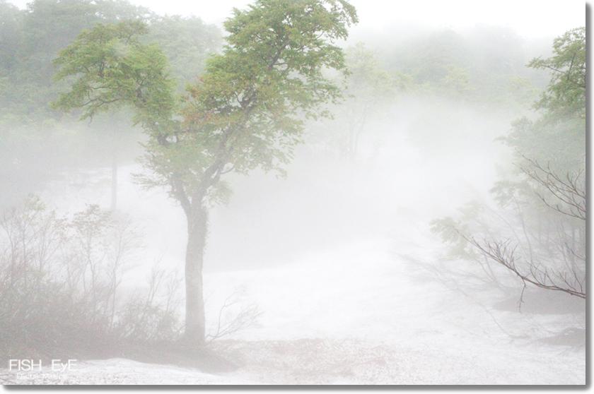 130606-amamizu2.jpg