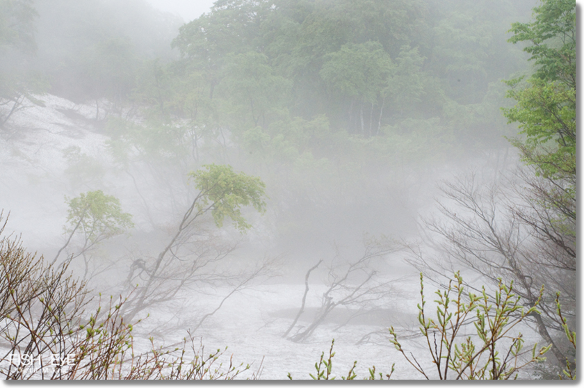 130606-amamizu3.jpg