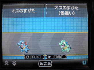 No.158 ★ワニノコ-4