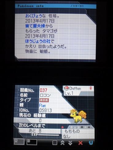 No.037 ★ロコン-2
